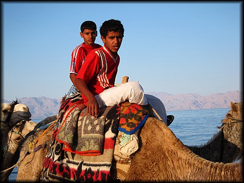 boys on a camel