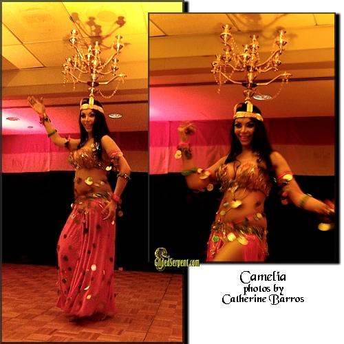 Camelia by Catherine Barros