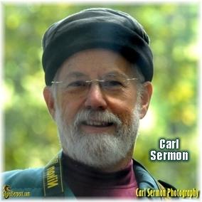 Carl Sermon